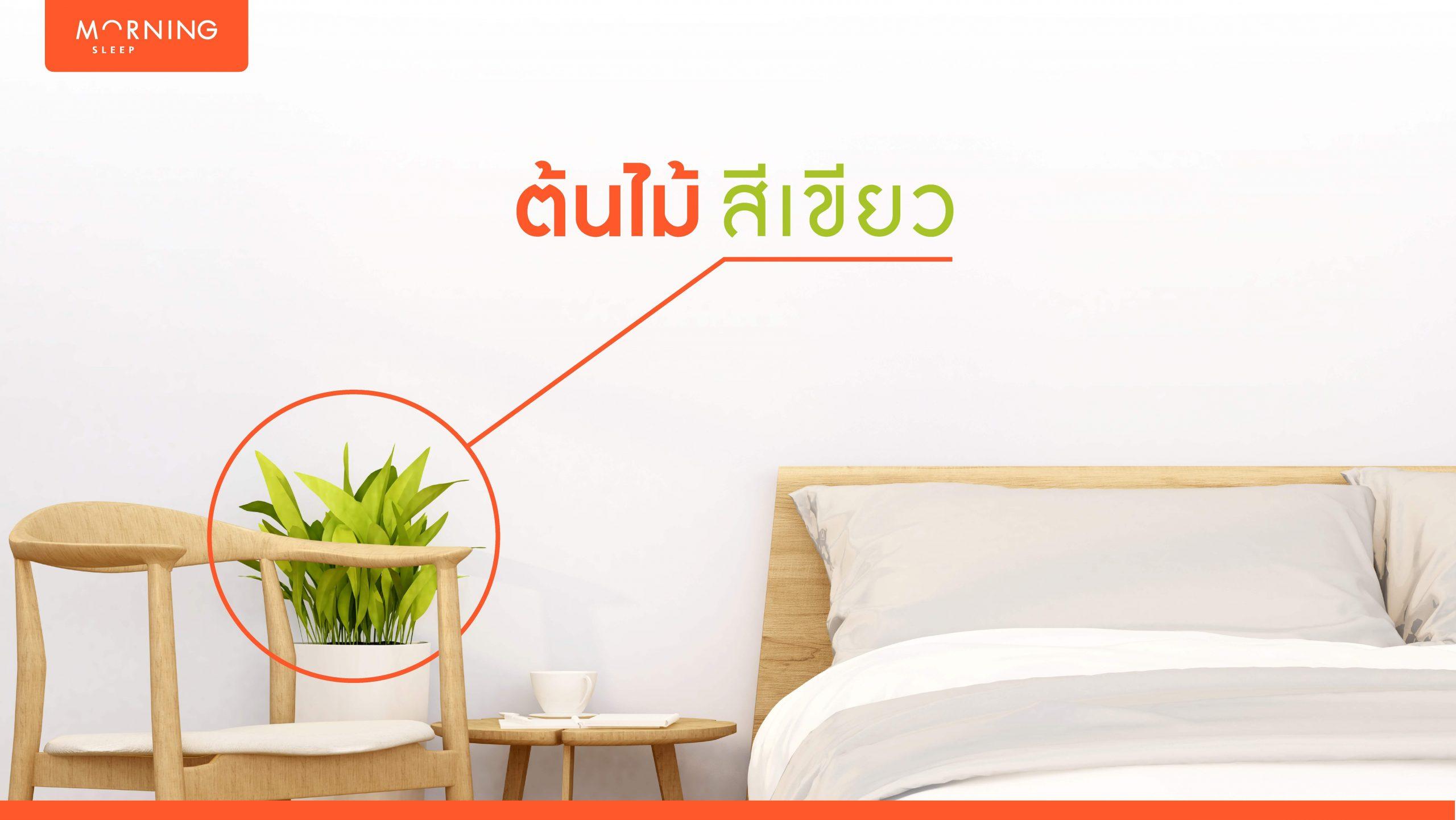 จัดห้องนอน มินิมอลด้วยการปลูกต้นไม้สีเขียว